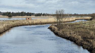 Ryå nord for Aalborg, hvor godt 1.300 borgere får deres vandforsyning fra private boringer. Især de mindre boringer er udfordret af højt nitratindhold i grundvandet, fordi de ikke har samme mulighed for at blande fra forskellige vandboringer eller bore så dybt, som de store vandværker har.