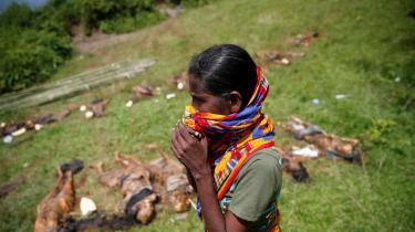 Lokale i Rakhine-provincen forsøger at identificere ligene fra massegravene.