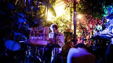 Igennem sin karriere har Anders Lauge Meldgaard, der er medstifter af det kollektive pladeselskab Yoyooyoy og sidste sommer var med til at stifte sammenslutningen År & Dag, gang på gang sprængt de vante formater. Her spiller han koncert under navnet Frisk Frugt i Palmehuset, Botanisk Have i København.