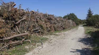 Størstedelen af træpiller brugt i danske kraftværker er importeret fra f.eks. Rusland, og de belaster Ruslands klimaregnskab, ikke Danmarks, selv om den CO2-holdige røg kommer ud af danske skorstene.