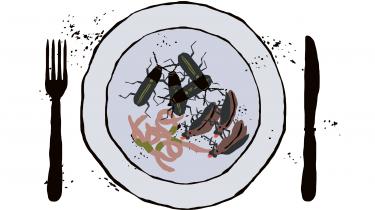 Vores forhold til insekter er besværet af en kulturelt nedarvet aversion for kryb, der går helt tilbage til bibelsk tid. Men insekter er både en forudsætning for vores nuværende økosystem og en mulig løsning på vores kommende fødevareproblem. Så måske er det på høje tid, at vi lærer at elske det irriterende småkravl