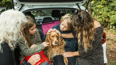 Hører du til dem, der allerede har et selskabsdyr, så overvej, om du virkelig tilgodeser dets reelle behov tilstrækkeligt. Du tror måske, at du elsker dit dyr ubetinget, men kærlighed til et dyr er ikke altid ensbetydende med kendskab til dets natur og behov. Gode hensigter er ikke altid nok.