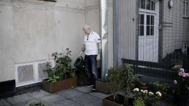 Søren Magnussen vander blomster i den have, som han sammen med patienter på Rigshospitalets psykiatriske afsnit har indrettet i det indhegnede område, hvor patienterne kan trække frisk luft. Haven er blevet et frirum, hvor patienterne kan opleve skønhed og lave noget normalt, fortæller han.