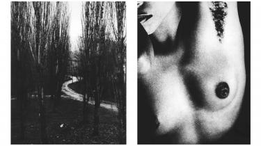 Tove Kurtzweil rejste flittigt som eksperimenterende kunstfotograf og dokumenterede sine værker i bøgerne 'Rum tid' (1988), 'Rummelige dimensioner' (1995) og 'Moment' (1998).