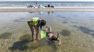 Trenden er, at man helst skal aktivere sine børn i sommerferien med masser af planlagte aktiviteter, men de har faktisk godt af at kede sig