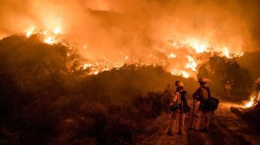 Skovbrande er ikke unaturlige. Men i år, og især i Europa, har de været større og mere ødelæggende end tidligere. Klimaforandringerne ser ud til at være en afgørende faktor, siger forskere, og skove i flammer vil blive mere og mere normalt, hvis ikke vi gør noget
