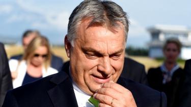 Viktor Orbáns regeringparti Fidesz vil lukke landets institutter for kønsstudier. I kampen mod det liberale Europa ofrer regeringen den akademiske frihed, mener ungarsk professor, hvis kritik bakkes op af akademisk forbund