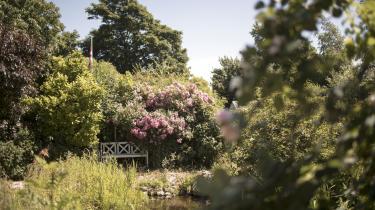 En uoverkommelig sommer går på hæld, skriver Karen Syberg.