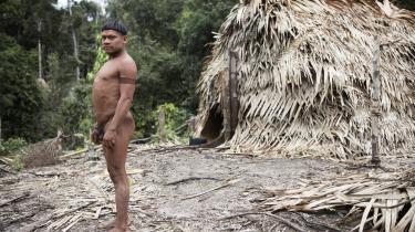 Xuxu Korubo levede selv i skoven indtil 2015, hvor han fik kontakt med omverdenen. Han er bekymret for sine brødre, der stadig lever i skoven. De skelner ikke mellem fiskere, der plyndrer deres ressourcer – og hjælpeorganisationen Funai. For dem er de alle sammen ens, fortæller han.