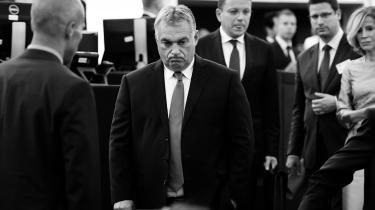 Viktor Orbán blev buhet i går i Europa-Parlamentet, men langtfra alle konservative parlamentarikere er modstandere af ungarerens 'iliberale demokrati'.