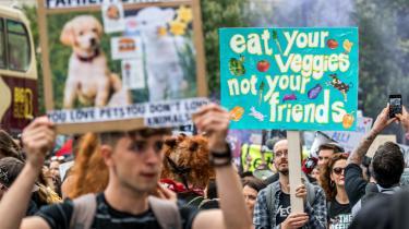 Denne sommer fandt dagens kronikør ud af, at veganisme ikke handler om at redde Jorden. Det handler om, at det er synd for dyrene.