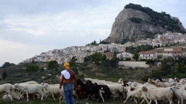 Der bor i dag 34 asylansøgere i den sicilianske landsby Sutera.