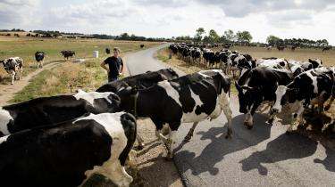 Landbruget slipper billigt i regeringens udspil, lyder det frr en række kritikere. Af en samlet reduktion på omkring 26mio. ton CO2, står landbruget kun for ca. 1,1