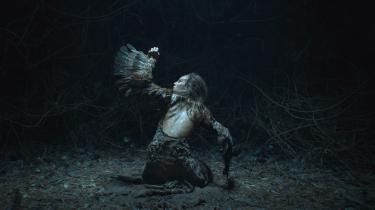 Peter Albrechtsen og Inger Elise Holms arbejde med lyden, der følger den onde heks Kimæra viser filmen 'Vildheks's økokritiske potentiale. En sær unaturlig knasen afslører, at Kimæras krop ikke er hendes egen, men en forbrydelse mod naturen.