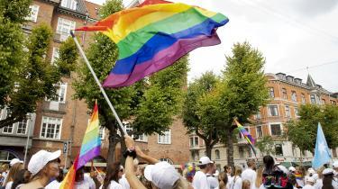 »Jeg er ikke ude på at miskreditere regnbueforeningen. Tværtimod har jeg stor respekt for LGBT Danmarks arbejde og forstår, at den kæmper for alles rettigheder. Men hvis vi som community ønsker at formidle budskaber til personer, som ikke befinder sig i samme kreds, burde vi måske gøre en større dyd ud af at have den specifikke kontekst, vi befinder os i, for øje, inden vi hiver en masse interne begreber, forkortelser og kategorier op af lommen.«