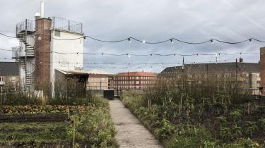 Forvaltningens jurister bør vise mod til at afgøre i strid med byggelovens parkeringspladsordning i København til fordel for taglandbruget ØsterGro