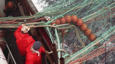 Danmark ejer 95 procent af EU's tobiskvoter, og det er dette fiskeri den danske regering, ifølge WWF, har presset på i forhandlingerne med Tyskland for at beskytte.