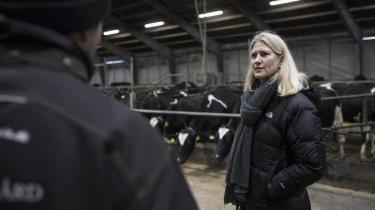 Landbrug og Fødevarers nye topchef, Anne Arhnung, mener, at landbruget kan og bør spille en større rolle i den grønne omstilling. Hun ser det bl.a. som sin opgave at få gjort brudt debatten ned til konkrete tiltag for landmændene.