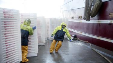 Danske fiskere – som her i Hanstholm Havn – frygter med god ret et forestående Brexit, fordi danske skibe fisker i britisk farvand. I dag er fiskeriministeren i samråd om konsekvenserne af et Brexit for dansk fiskeri.