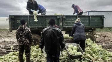 Mistillid blandt forbrugerne, svag konkurrence og mangel på lovgivning og statsstøtte er blandt de vigtigste grunde til, at Rusland stadig halter bagud på økologiområdet i forhold til sine vestlige naboer, mener Oleg Mironenko fra den Nationale Økologiforening.