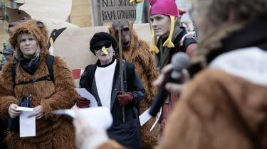NOAH's 50-års jubilæum blev blandt andet markeret med Dyrenes optog i torsdags, hvor NOAH's ark og det halve dyrerige tog turen til Klimaministeriet.