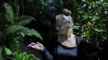 Kendetegnene for Stridsbergs roman er de voldsomme kontraster. Skoven og søbredden, hvor mordet finder sted, er en eventyrlig idyl, i modsætning til byens hårde arkitektur, skriver Kristin Vego.