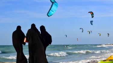 Emiraterne har varme og strande, men samtidigt er det også et regime med meget indskrænkede frihedsrettigheder. To danske youtubestjerner er taget på betalt ferie i landet, og de fortæller udelukkende om de luksuriøse forhold.