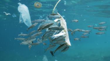 Et eksperiment viste, at bæreposer – som britiske supermarkeder sælger bionedbrydelige – stadig kunne bruges til at bære varer efter at have været udsat for havvand og jord i tre år. Mange bæreposer, både traditionelle og bionedbrydelige, ender i havet, som denne i en multestime ud for Spaniens kyst.