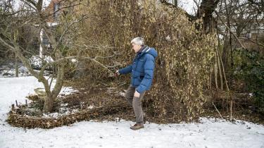 Per Gundersen, KU-professor i skov, natur og biomasse, viser os sin klimahave, der er tæt beplantet for at optage CO2.