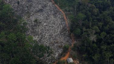 Rydningen af verdens største regnskov sker med en hidtil uset hastighed. Med kun få dage tilbage af måneden vil juli blive den første måned i mange år, hvor Brasilien har mistet et stykke regnskov på størrelse med Greater London.