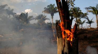Iøjeblikket er der omkring 74.000 igangværende brande i verdens største regnskov, hvilket er godt 40 procent flere end sidste år, men nogenlunde på niveau med tallene fra 2016.