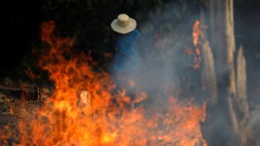 En mand arbejder med skovrydning i Iranduba, Amazonas i Brasilien den 20. august, 2019. Alene den seneste uge er der registreret 9.500 skovbrande i Amazonas.
