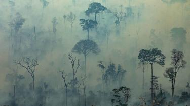 Billedet er fra Amazonas den 23. august.