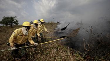Brasilianske brandfolk i aktion i weekenden i Amazon- delstaten. Alle kan bidrage til at stoppe afnbrændingen af regnskoven ved at være mere bevidste om, hvordan ingredienserne i de varer, vi køber i hverdagen, påvirker rydningen af skoven, anfører dagens kronikør.
