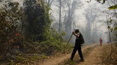 De bolivianske myndigheder har haft begrænsede midler at sætte ind mod skovbrandene.