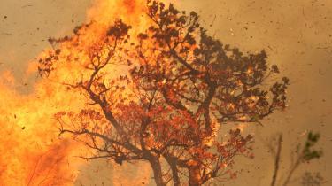 Hvis vi nu forestiller os, at forskning viste, at afbrændingen af Amazonas var så voldsom, at den ville medføre, at dele af Sydamerika blev ubeboelig. Eller at den ligefrem ville medføre klodens og menneskehedens undergang som sådan. Hvordan skulle andre stater så forholde sig til en sådan trussel?