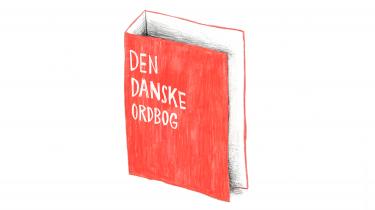 Besparelserne har medført, at Dansk Sprognævn er mere tilbageholdende i at investere i længerevarende projekter. For eksempel en digital database over det danske sprog, som er nødvendig for at fremtidens robotter kan tale dansk