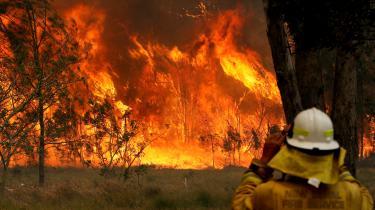 Brandene er en eksistenstrussel for Australien, men lederne af landets borgerlige regeringskoalition nægter at vedgå en sammenhæng mellem klimaændringer og de hyppigere og mere udbredte brande, skriver David Rehling.