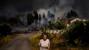 MACAO, PORTUGAL.En landsbyboer kalder på hjælp fra brandfolk under sommerens tørke.Mandag den 2. december begynder COP25. Gennem topmødet vil Information bringe billeder fra en række forskellige steder i verden, hvor forandringerne i klimaet sætter sig spor.