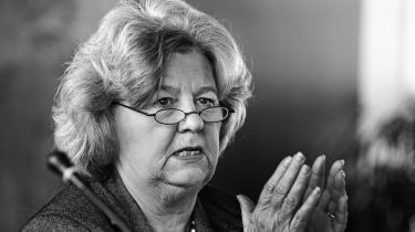 I 2015kunne Statsløsekommissionenkonkludere, at tidligere integrationsminister Birthe Rønn Hornbech havde været skyld i, at Integrationsministeriet havde nægtet statsborgerskab til statsløse i strid med internationale konventioner. Men man kunne ikke »med den nødvendige sikkerhed« fastslå, at den jurauddannede Birthe Rønn Hornbech havde forstået konsekvenserne af sine handlinger.