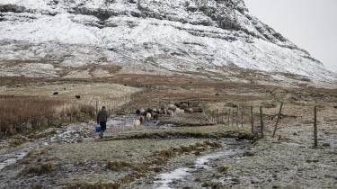 I Norðradalur (Nordredal) ligger Ólavur Reinerts gård. Her genner han sine får op mod bjerget. Tidligt på sommeren går fårene helt op på toppen og i sensommeren hjælpes bønderne ad med at få hinandens får ned igen
