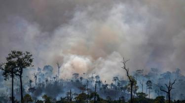 Brasiliens præsident Jair Bolsonarovil accelerere udviklingen i Amazonas ved at fælde og afbrænde uhyre mængder regnskov på trods af massive protester fra knap en million mennesker, som altid har levet der.