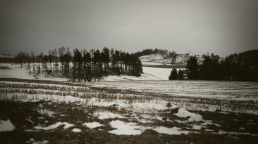 Snefald er blevet et sjældent syn i det danske land. Her ses et delvist snedækket landskab fra Mols Bjerge i 2011.