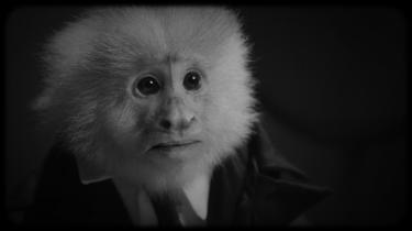 'What Did Jack Do?' er en 17 minutter lang sort-hvid noirpastiche, hvor David Lynch i rollen som en rygende politidetektiv afhører Jack, en lille talende abe i jakkesæt.