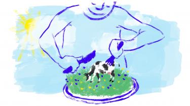 Det er et af de mest brugte argumenter, kødspisere anvender. Men hvorfor i alverden tager man livet af et levende væsen, der lever et godt liv? Argumentet understreger i virkeligheden det modsatte: At dyrene fortjener at leve videre, skriver Rasit Ufuk Tas i dette debatindlæg