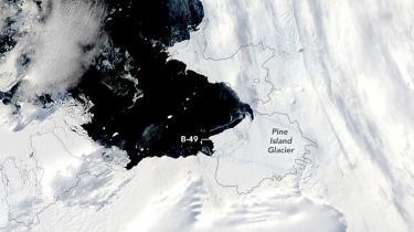 Netop nu iagttages fra satellitter, hvordan den store Pine Island-gletsjer ved foden af den store halvø kaster enorme isbjerge fra sig i et højere tempo end normalt. Tidligere på ugen kælvede gletsjeren således med en ismasse på 350 kvadratkilometer, svarende til 3,5 gange Amagers areal