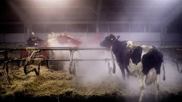 Landbruget står i dag for op mod 30 procent af Danmarks klimabelastning, arealanvendelse medregnet. Heraf kommer omkring 60 procent af udledningerne fra husdurproduktionen af eksempelvis køer og svin.
