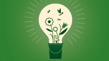 Teknologien alene kan ikke redde os i klimakrisen. Der er brug for, at vi får øjnene op for naturens store potentiale – både i forhold til at håndtere og bremse klimaforandringerne. Det fortæller lektor Marianne Zandersen i denne uges afsnit af Informations klimapodcast 'Den grønne løsning'