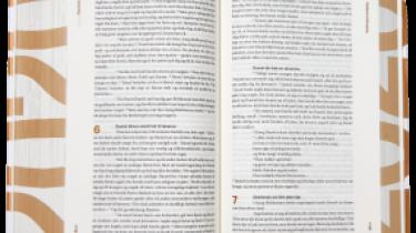 Oversætterens arena vil til alle tider være en holdeplads for øretæver, og ikke mindst når det gælder Bibelen: For det er godt, at den er tilgængelig i et sprog, som alle kan forstå – men det er ærgerligt, hvis ikke overleveringen bærer præg af, at den netop er vandret gennem menneskeheden i hundreder af år.