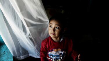 Seksårige Edgar Hernandez fra Mexico blev udråbt som Patient Zero i svineinfluenzaen i 2010. Senere fandt man dog andre tidligere smittede patienter.